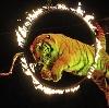 Цирки в Мариинском Посаде
